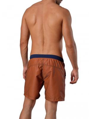 Geronimo Swim Shorts, Item number: 1410p4 Brown, Color: Brown, photo 6