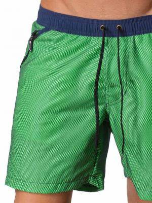 Geronimo Swim Shorts, Item number: 1410p4 Green, Color: Green, photo 4