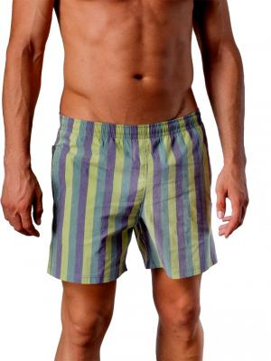 Geronimo Swim Shorts, Item number: 1407p1 Green, Color: Multi, photo 1
