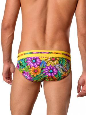 Geronimo Briefs, Item number: 1420s2 Yellow, Color: Multi, photo 3