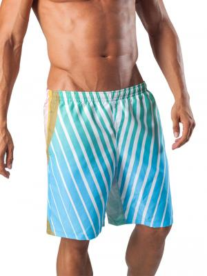 Geronimo Board Shorts, Item number: 1553p4 Light Boardshort, Color: Multi, photo 1