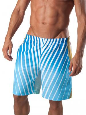 Geronimo Board Shorts, Item number: 1553p4 Dark Boardshort, Color: Multi, photo 1