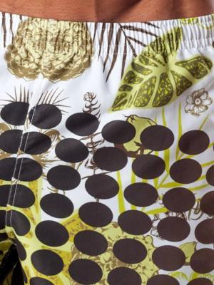Geronimo Board Shorts, Item number: 1550p4 Boardshorts, Color: Multi, photo 4