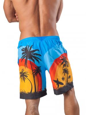 Geronimo Board Shorts, Item number: 1558p4 Blue Boardshorts, Color: Blue, photo 4