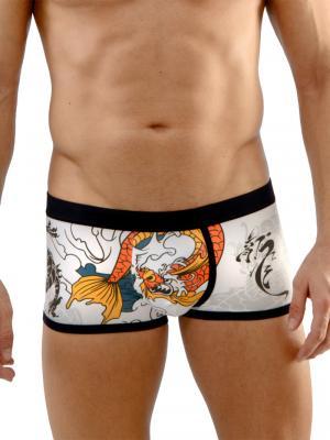 Geronimo Boxers, Item number: 1670b1 Dragon Boxer Briefs, Color: Multi, photo 1