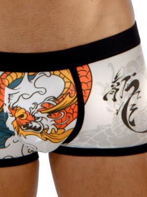 Geronimo Boxers, Item number: 1670b1 Dragon Boxer Briefs, Color: Multi, photo 3