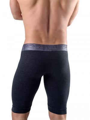 Geronimo Boxers, Item number: 1761b9 Graphite Long Leg Boxer, Color: Grey, photo 3