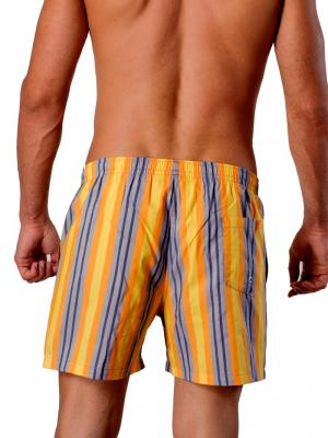 Geronimo Swim Shorts, Item number: 1404p1 Yellow, Color: Yellow, photo 4