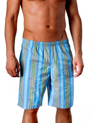 Geronimo Board Shorts, Item number: 1404p4 Blue, Color: Blue, photo 1
