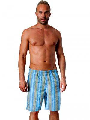 Geronimo Board Shorts, Item number: 1404p4 Blue, Color: Blue, photo 2