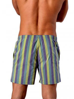 Geronimo Swim Shorts, Item number: 1407p1 Green, Color: Multi, photo 5