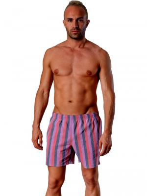 Geronimo Swim Shorts, Item number: 1407p1 Grey, Color: Multi, photo 2