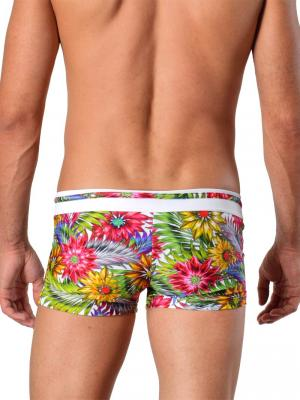 Geronimo Boxers, Item number: 1420b1 White, Color: Multi, photo 5