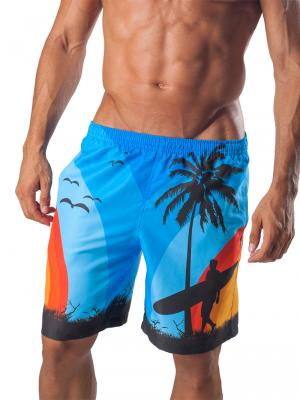 Geronimo Board Shorts, Item number: 1558p4 Blue Boardshorts, Color: Blue, photo 1
