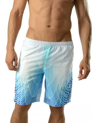 Geronimo Board Shorts, Item number: 1602p4 Blue Boardshorts, Color: Blue, photo 1