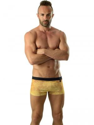 Geronimo Boxers, Item number: 1609b1 Gold Koi Fish Trunk, Color: Brown, photo 2