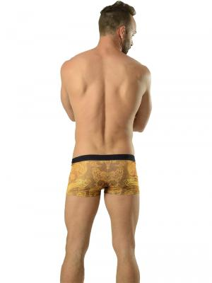 Geronimo Boxers, Item number: 1609b1 Gold Koi Fish Trunk, Color: Brown, photo 5