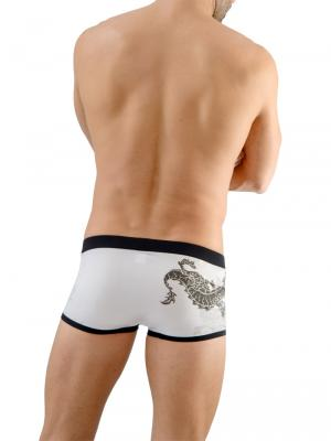 Geronimo Boxers, Item number: 1670b1 Dragon Boxer Briefs, Color: Multi, photo 5