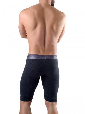 Geronimo Boxers, Item number: 1761b9 Graphite Long Leg Boxer, Color: Grey, photo 4