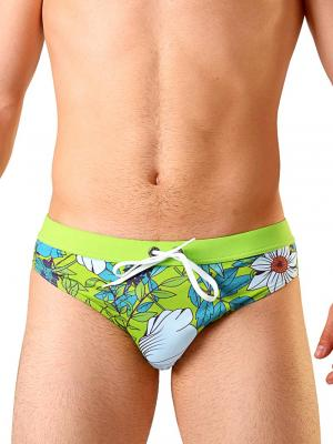 Geronimo Briefs, Item number: 1801s2 Green Swimming Brief, Color: Green, photo 1