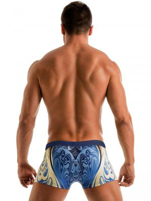 Geronimo Boxers, Item number: 1904b1 Vibrant Swim Trunk, Color: Multi, photo 5