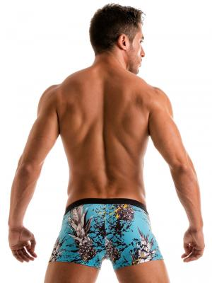 Geronimo Boxers, Item number: 1908b1 Blue Pineapple Trunk, Color: Blue, photo 6
