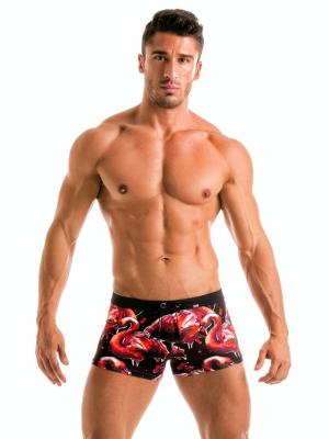 Geronimo Boxers, Item number: 1914b1 Flamingo Swim trunk, Color: Multi, photo 2