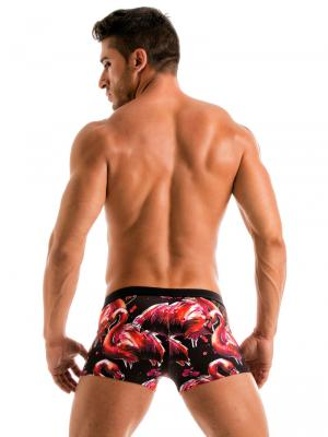 Geronimo Boxers, Item number: 1914b1 Flamingo Swim trunk, Color: Multi, photo 6