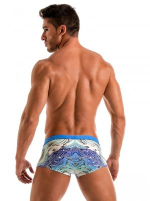 Geronimo Square Shorts, Item number: 1918b2 Coral Seaweed Hipster, Color: Blue, photo 6